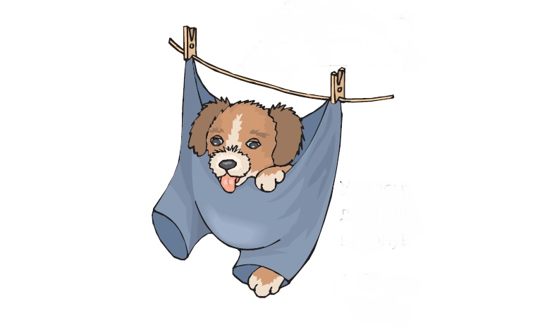 Догляд за собакою